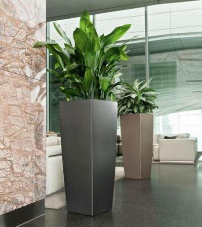 lechuza cubico alto h j krukke med selvvanding. Black Bedroom Furniture Sets. Home Design Ideas
